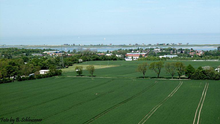 Blick zum Graswader